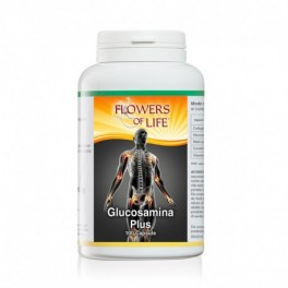 Glucosamina e Collagene 100cps Flowers of life - per la funzionalità delle articolazioni e la produzione di cartilagine