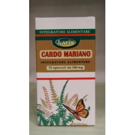 Cardo Mariano 70 opercoli Larix