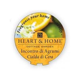 Incontro di agrumi - Cialda in cera di soia - HEARTH&HOME