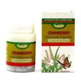 Cranberry 70 opercoli da 300 mg Larix