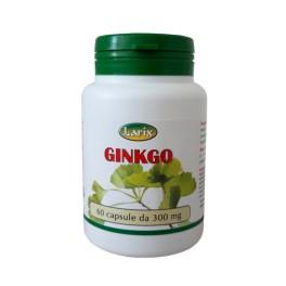 Ginkgo Biloba Larix -coadiuva la funzionalità di circolazione e memoria, 60 capsule